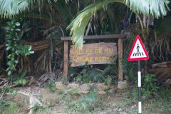 Vallee De Mai National Park