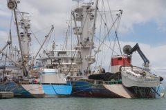 Large fishingboats