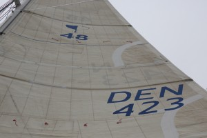 Sail logo and sailnumber